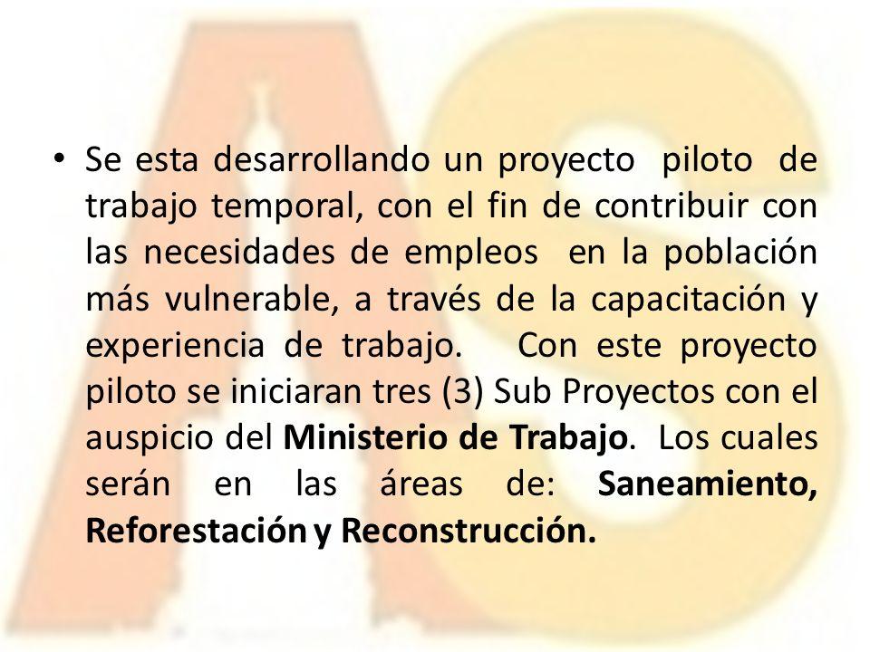 25 octubre 2010 santiago rep blica dominicana ppt descargar for Oficina trabajo temporal
