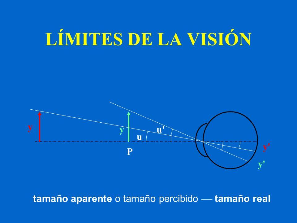 LÍMITES DE LA VISIÓN y y u u y P y