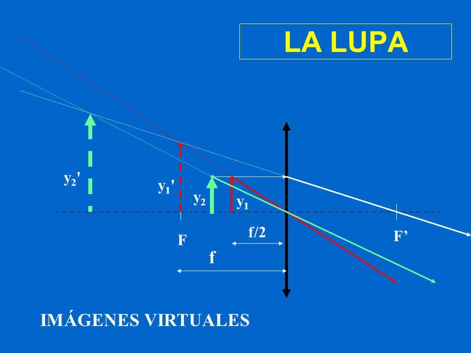 LA LUPA y2 y1 y2 y1 f/2 F' F f IMÁGENES VIRTUALES