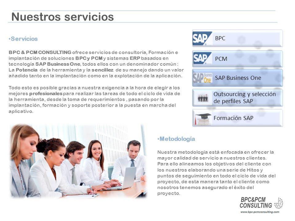 Nuestros servicios BPC PCM SAP Business One