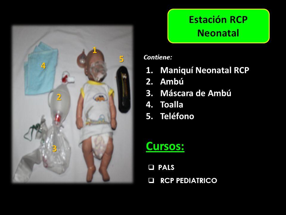 6 6 4 3 4 2 3 5 1 1 2 5 Cursos: Estación RCP Neonatal 1 5 4