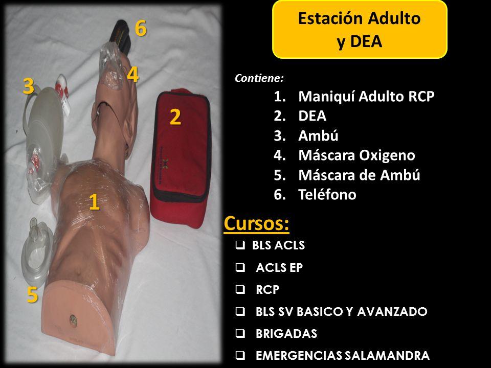 6 4 3 2 1 5 Cursos: Estación Adulto y DEA Maniquí Adulto RCP DEA Ambú