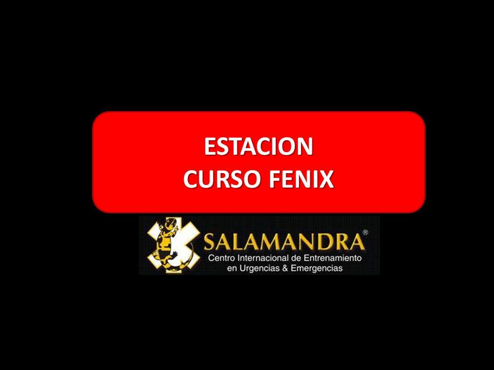 ESTACION CURSO FENIX