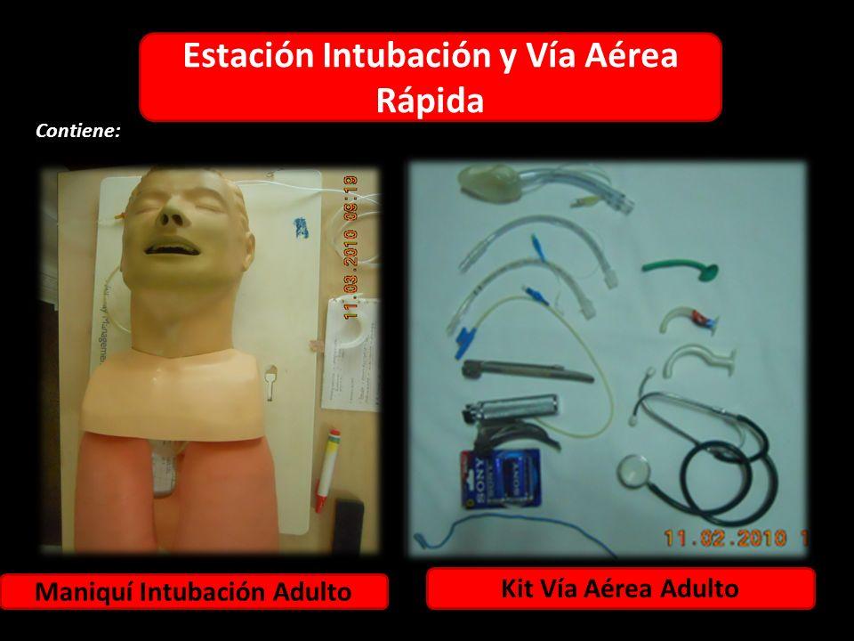 Estación Intubación y Vía Aérea Rápida Maniquí Intubación Adulto