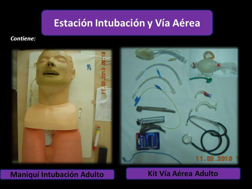 Estación Intubación y Vía Aérea Maniquí Intubación Adulto