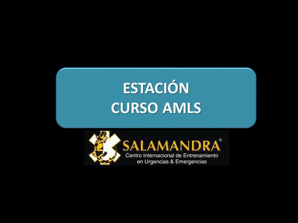 ESTACIÓN CURSO AMLS
