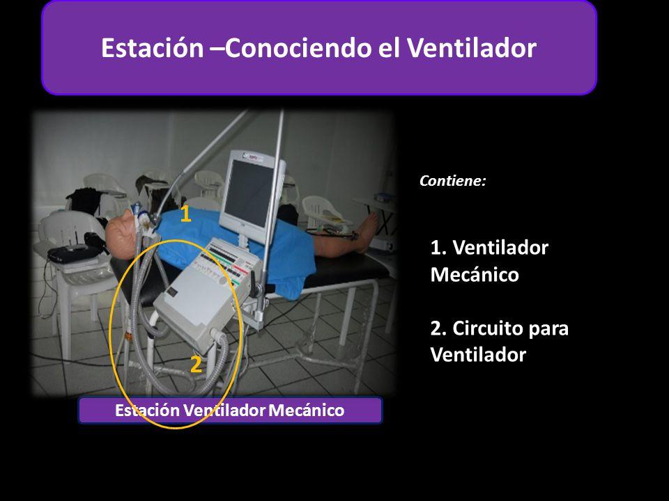 Estación –Conociendo el Ventilador Estación Ventilador Mecánico