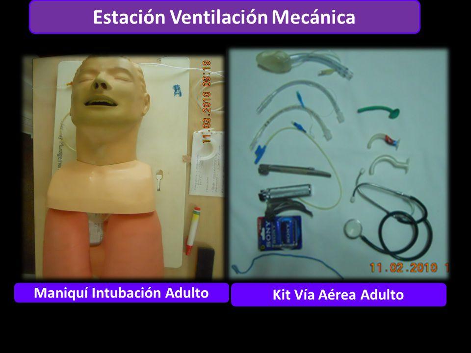 Estación Ventilación Mecánica Maniquí Intubación Adulto