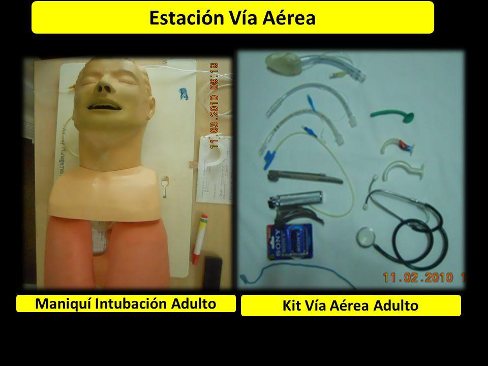 Maniquí Intubación Adulto