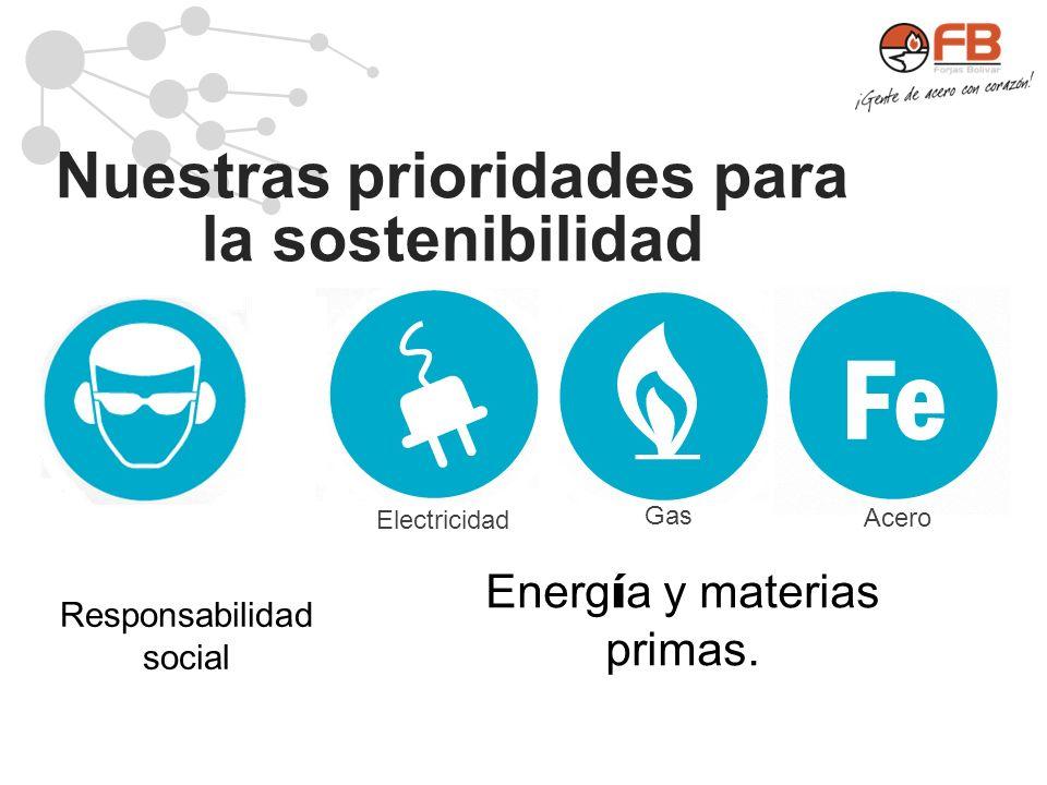 Nuestras prioridades para la sostenibilidad