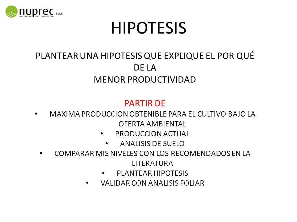 HIPOTESIS PLANTEAR UNA HIPOTESIS QUE EXPLIQUE EL POR QUÉ DE LA