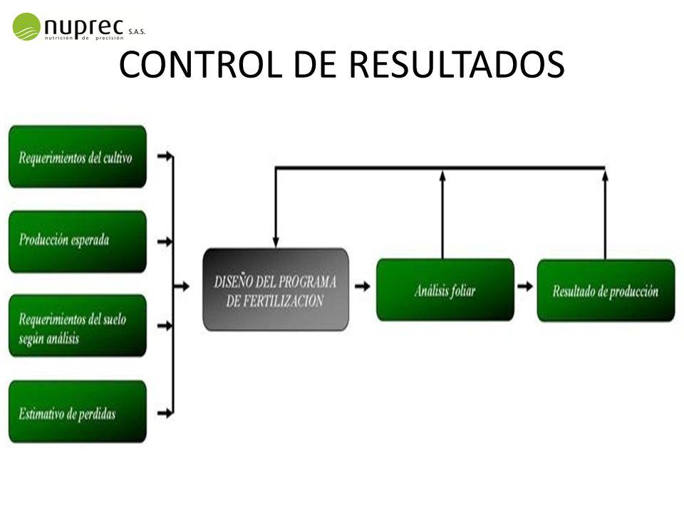 CONTROL DE RESULTADOS