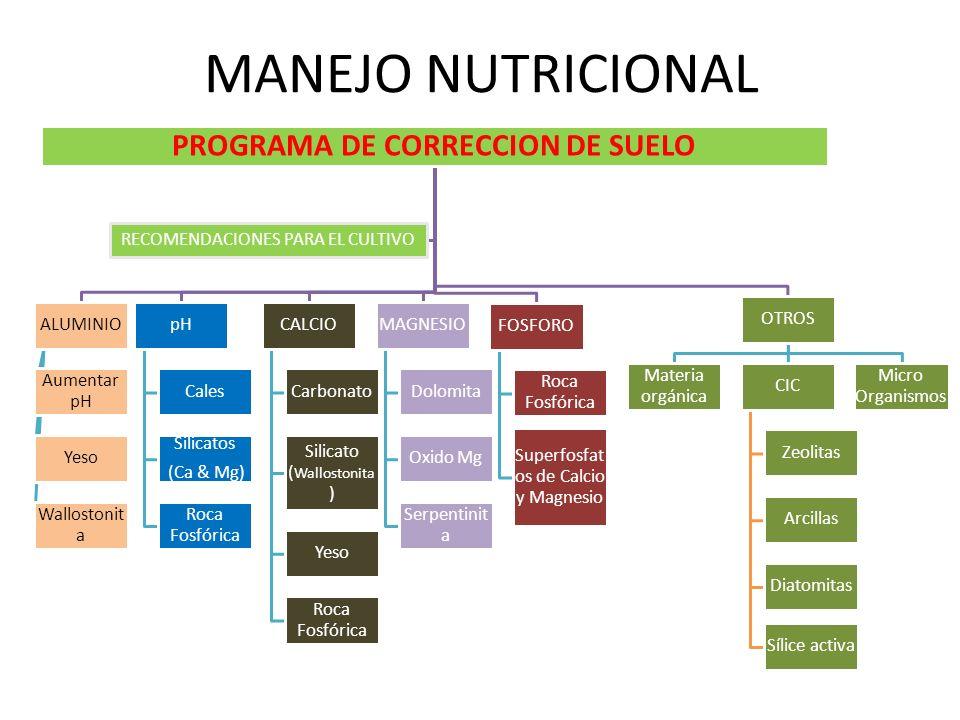 PROGRAMA DE CORRECCION DE SUELO