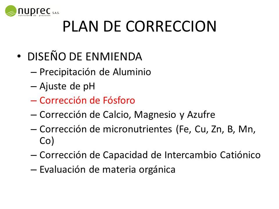 PLAN DE CORRECCION DISEÑO DE ENMIENDA Precipitación de Aluminio
