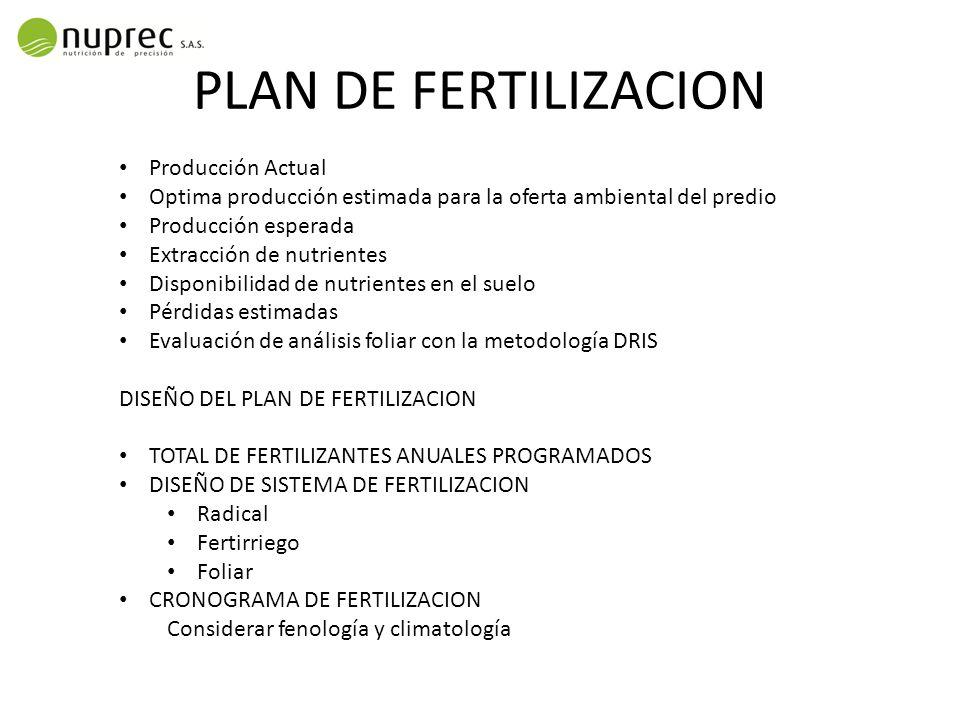 PLAN DE FERTILIZACION Producción Actual