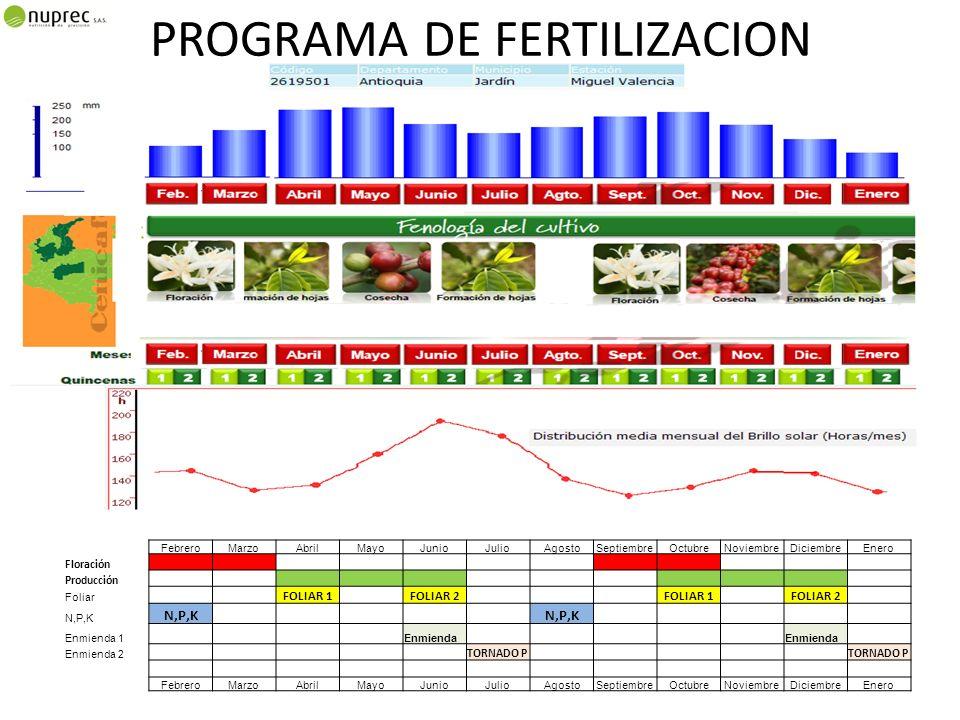 PROGRAMA DE FERTILIZACION FOLIAR
