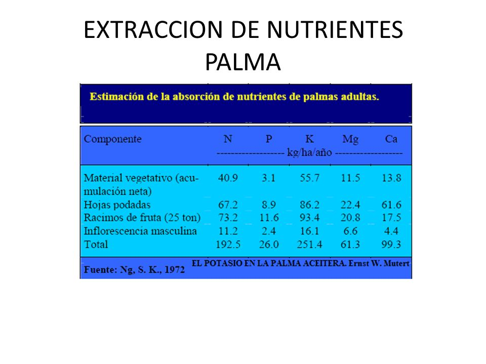 EXTRACCION DE NUTRIENTES PALMA