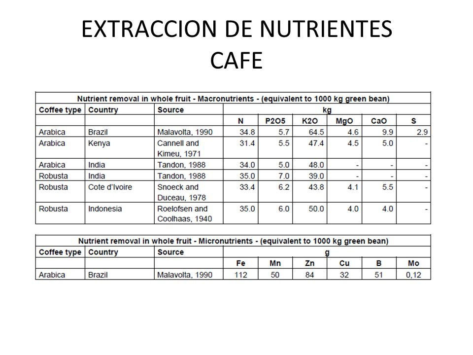 EXTRACCION DE NUTRIENTES CAFE