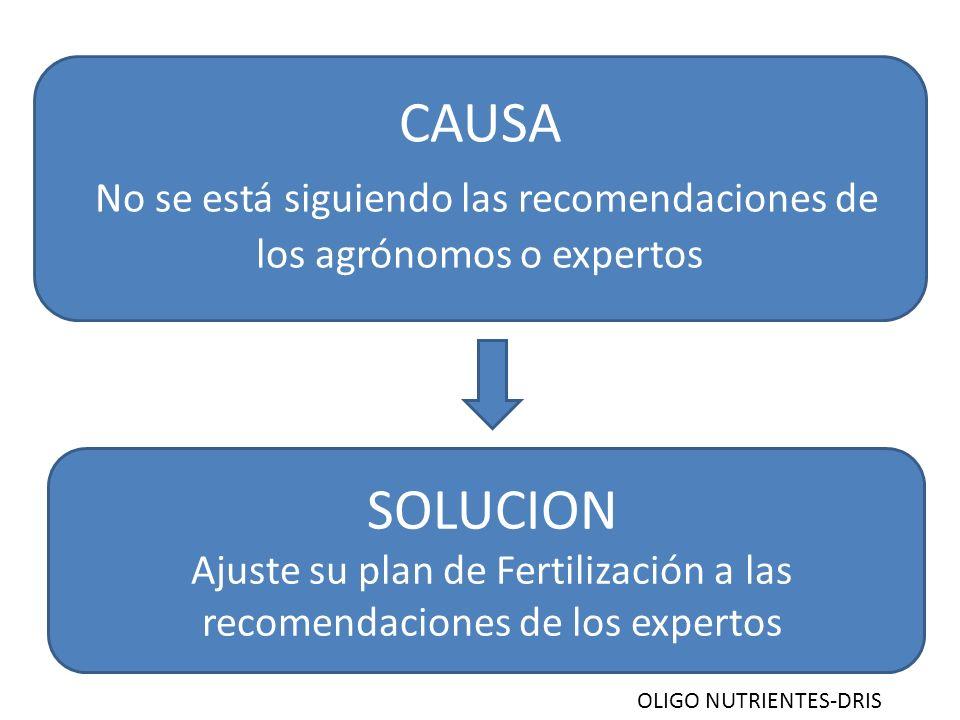 Ajuste su plan de Fertilización a las recomendaciones de los expertos