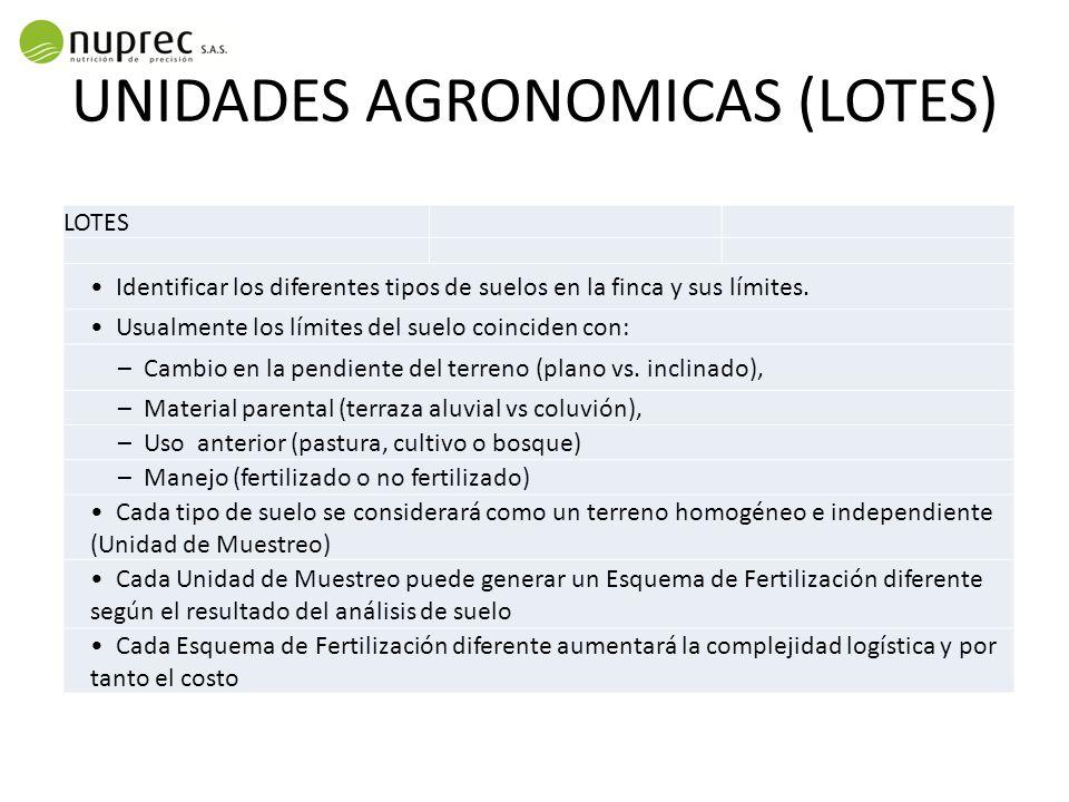 UNIDADES AGRONOMICAS (LOTES)