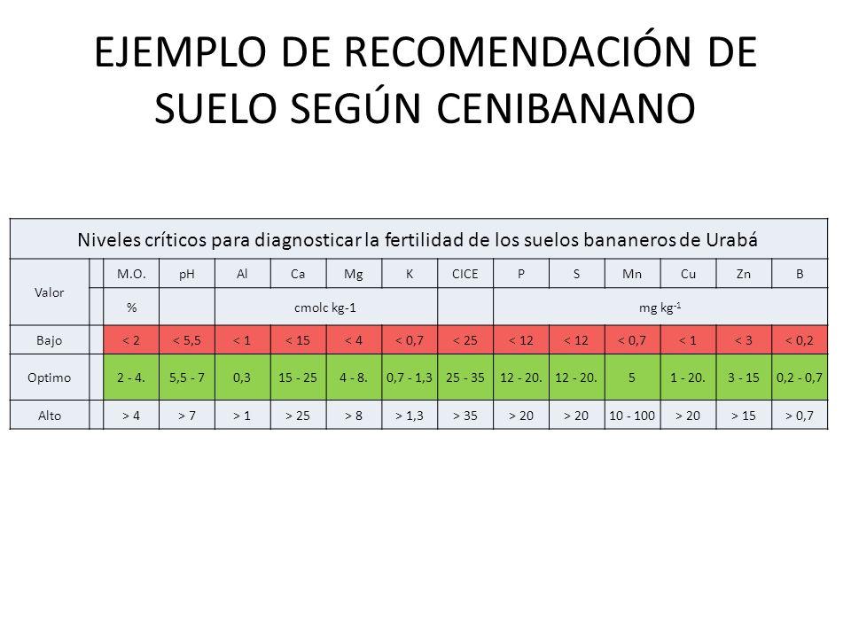 EJEMPLO DE RECOMENDACIÓN DE SUELO SEGÚN CENIBANANO