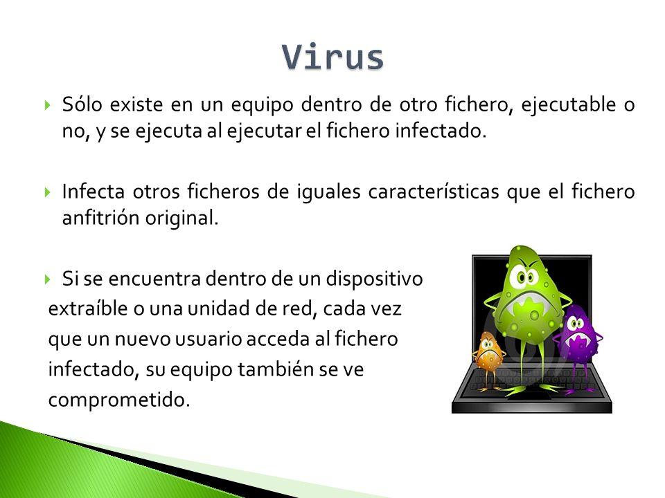 Virus Sólo existe en un equipo dentro de otro fichero, ejecutable o no, y se ejecuta al ejecutar el fichero infectado.
