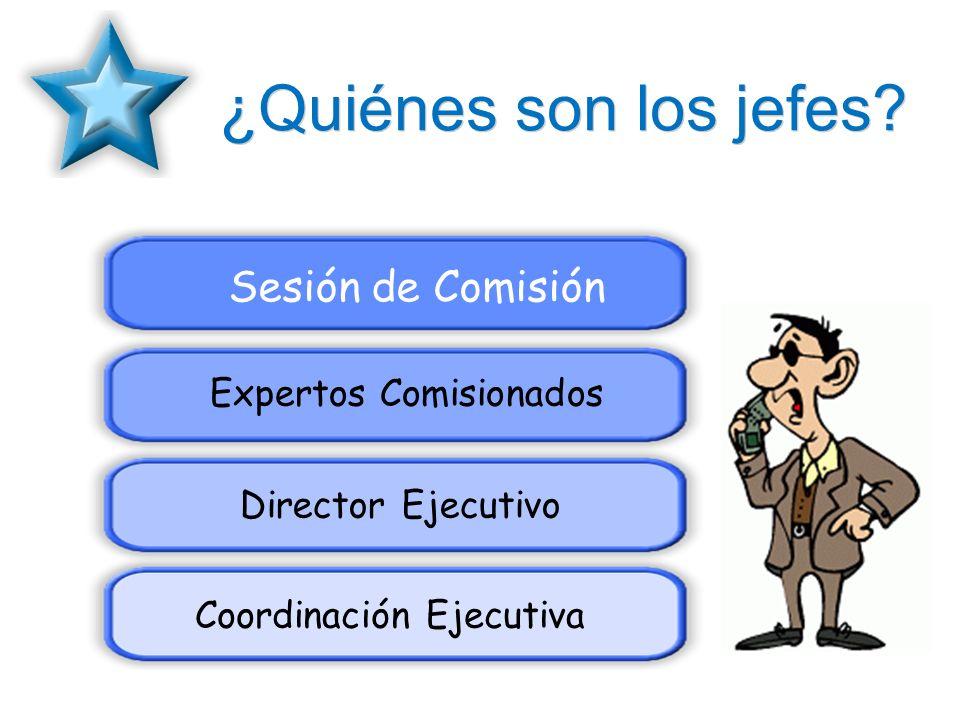 ¿Quiénes son los jefes Sesión de Comisión Expertos Comisionados