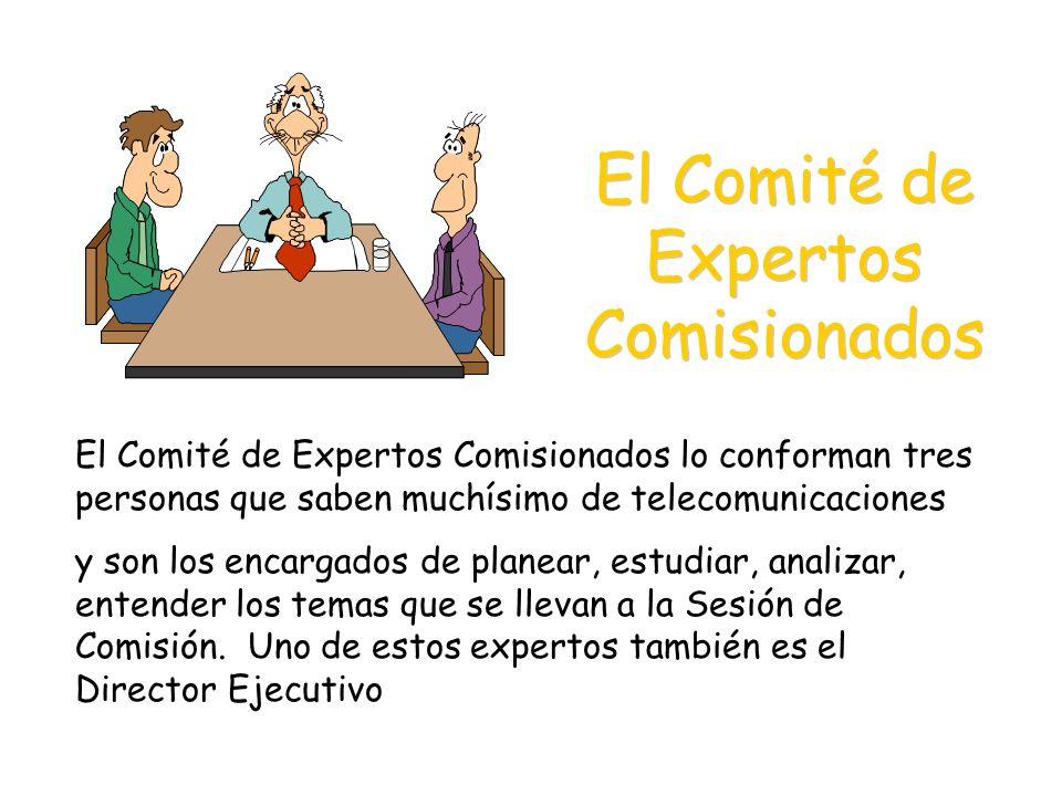 El Comité de Expertos Comisionados