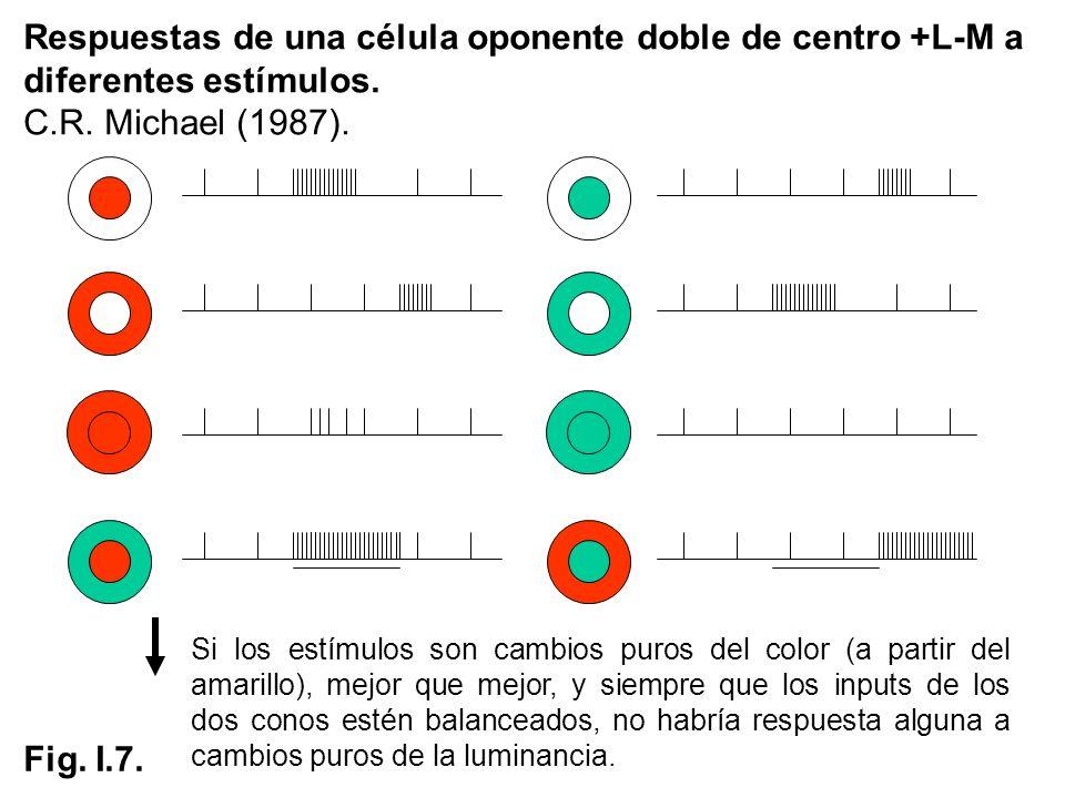 Respuestas de una célula oponente doble de centro +L-M a diferentes estímulos.