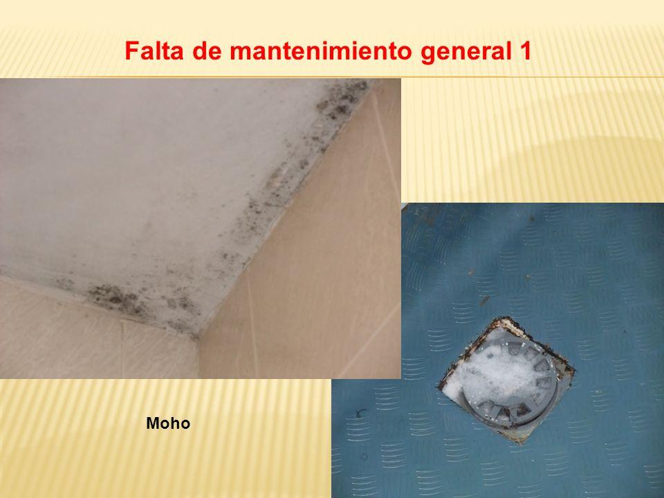 Falta de mantenimiento general 1