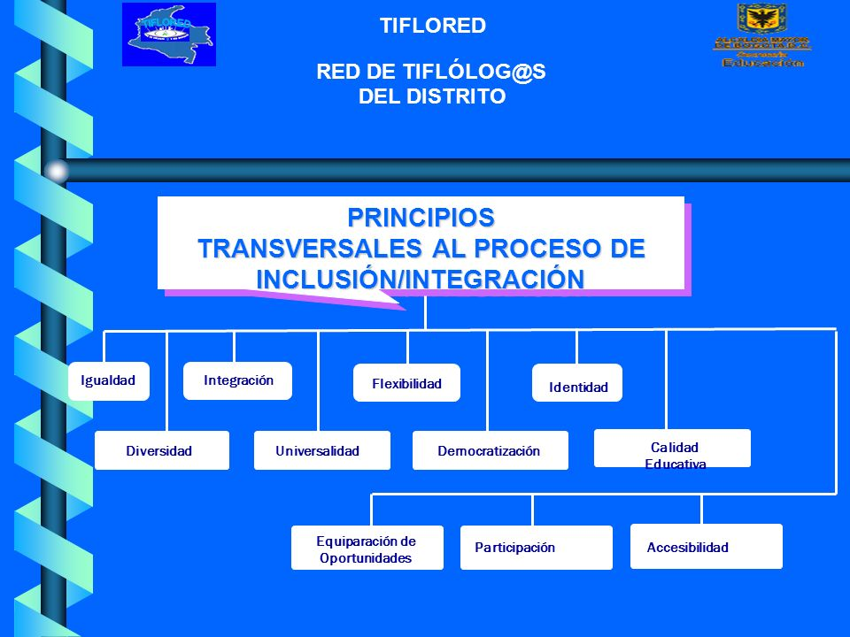 TRANSVERSALES AL PROCESO DE INCLUSIÓN/INTEGRACIÓN