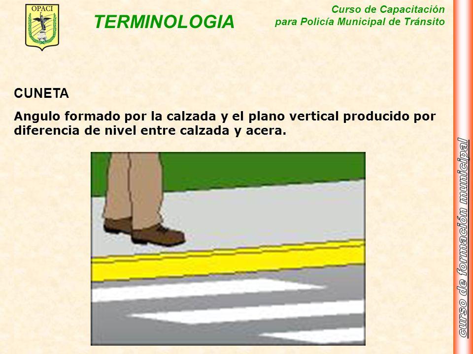CUNETAAngulo formado por la calzada y el plano vertical producido por diferencia de nivel entre calzada y acera.