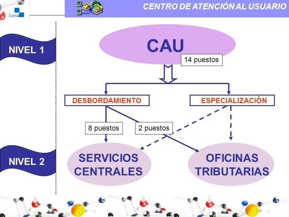 CAU SERVICIOS CENTRALES OFICINAS TRIBUTARIAS NIVEL 1 NIVEL 1 NIVEL 2