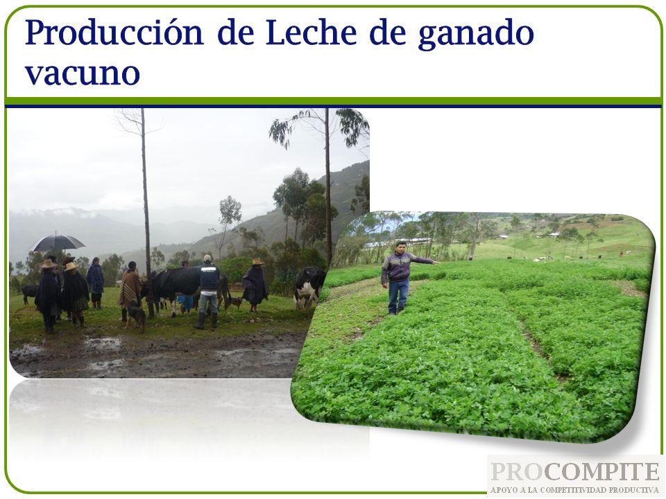 Producción de Leche de ganado vacuno