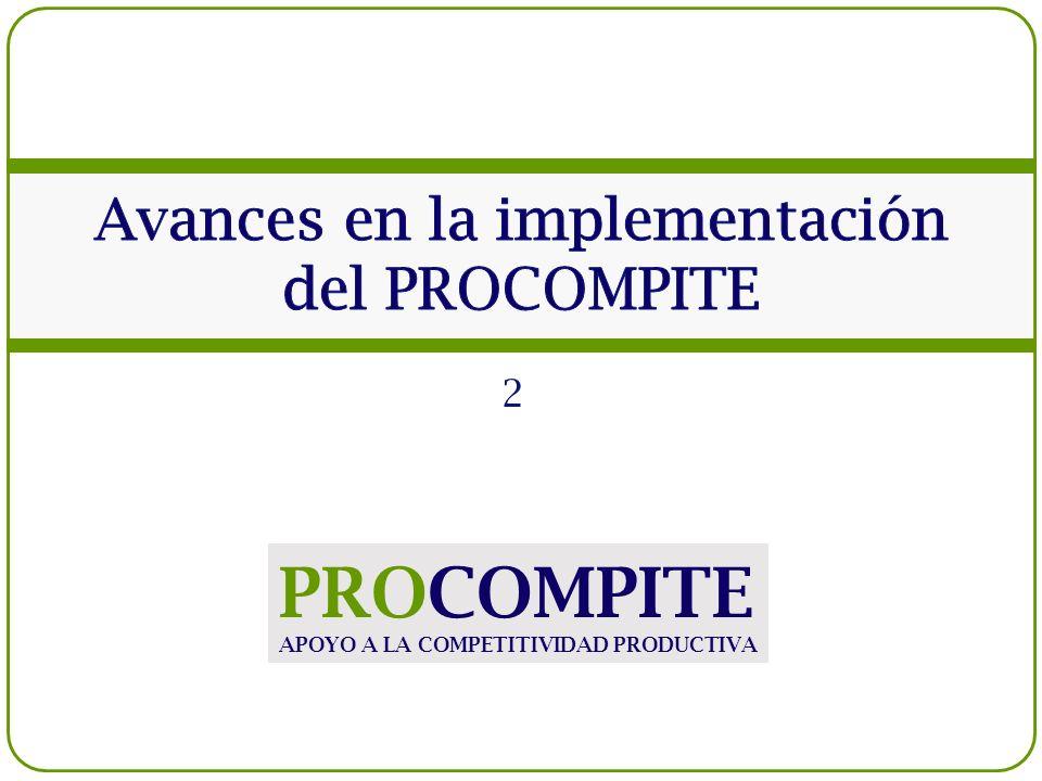 Avances en la implementación del PROCOMPITE