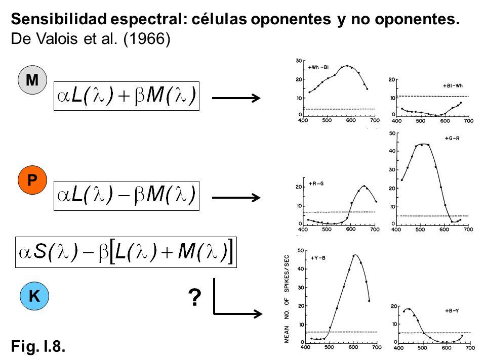 Sensibilidad espectral: células oponentes y no oponentes.