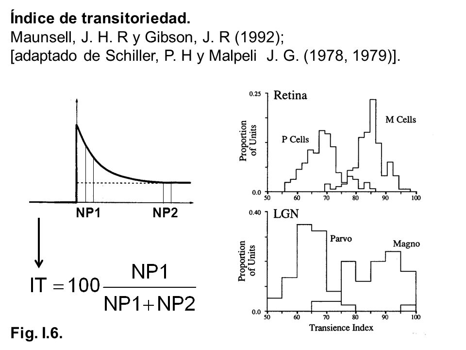 Índice de transitoriedad. Maunsell, J. H. R y Gibson, J. R (1992);
