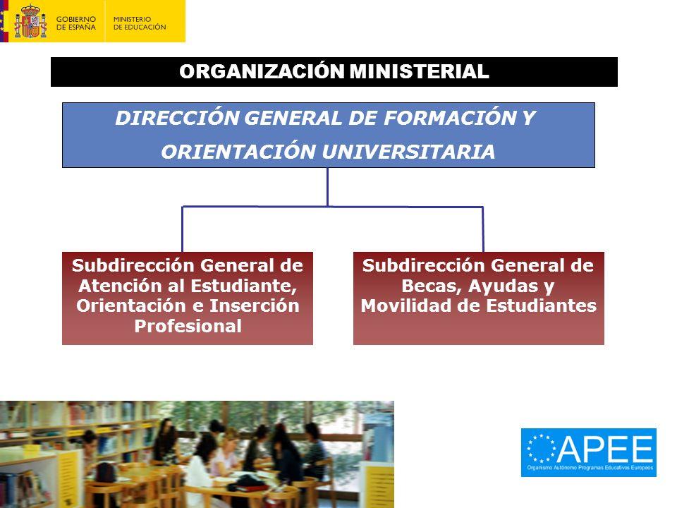 ORGANIZACIÓN MINISTERIAL
