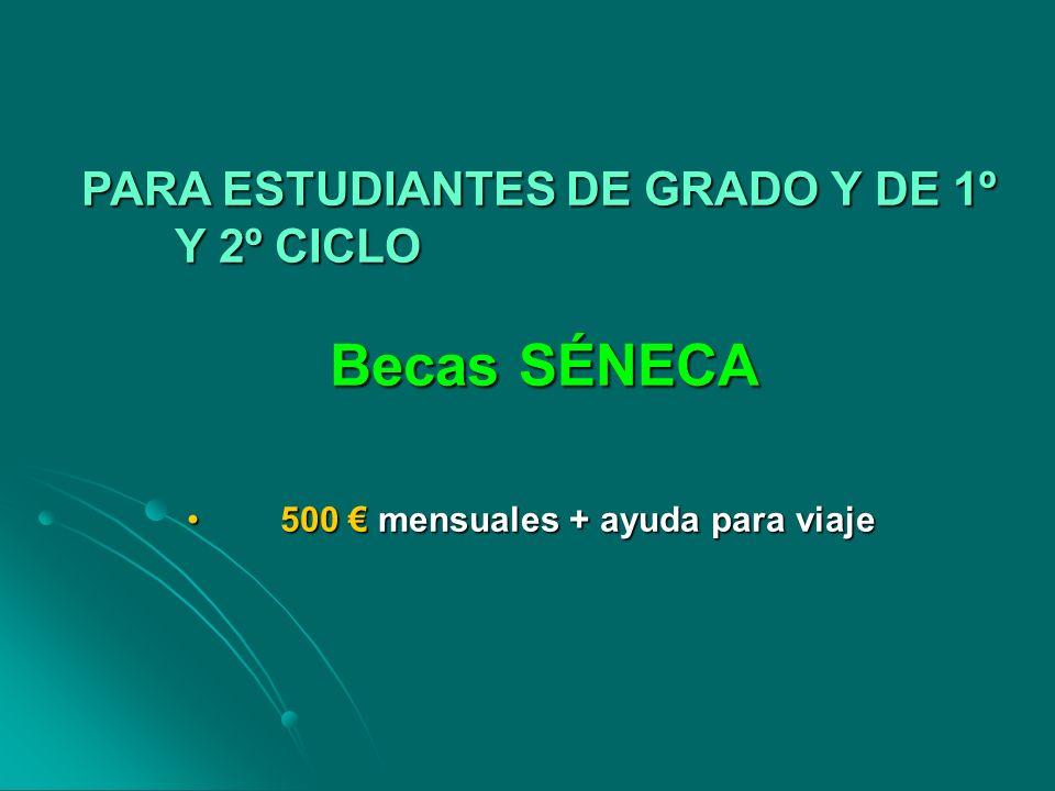 Becas SÉNECA PARA ESTUDIANTES DE GRADO Y DE 1º Y 2º CICLO