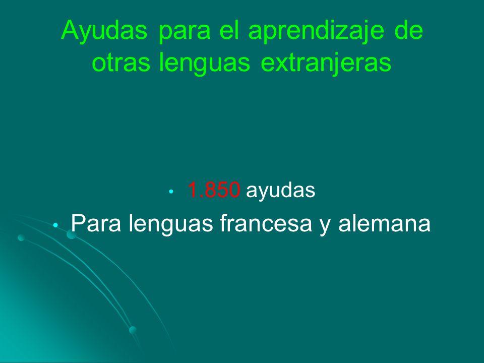 Ayudas para el aprendizaje de otras lenguas extranjeras