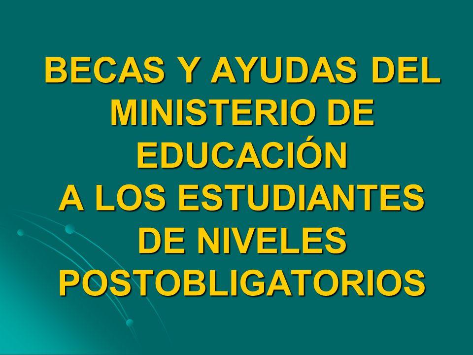 BECAS Y AYUDAS DEL MINISTERIO DE EDUCACIÓN A LOS ESTUDIANTES DE NIVELES POSTOBLIGATORIOS