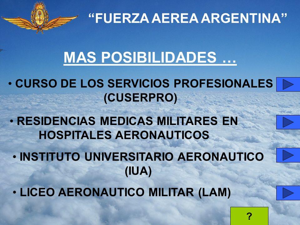 MAS POSIBILIDADES … FUERZA AEREA ARGENTINA