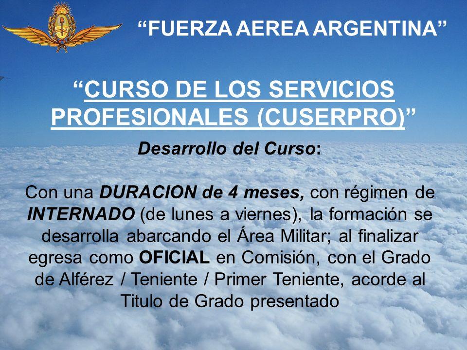 CURSO DE LOS SERVICIOS PROFESIONALES (CUSERPRO)