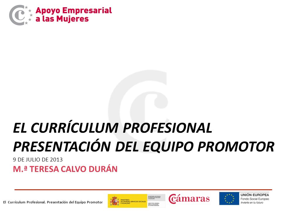 EL CURRÍCULUM PROFESIONAL PRESENTACIÓN DEL EQUIPO PROMOTOR