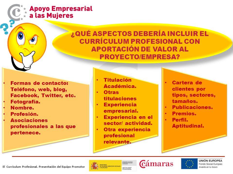 ¿QUÉ ASPECTOS DEBERÍA INCLUIR EL CURRÍCULUM PROFESIONAL CON APORTACIÓN DE VALOR AL PROYECTO/EMPRESA