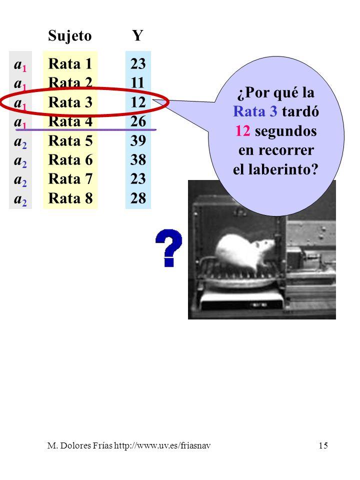 ¿Por qué la Rata 3 tardó 12 segundos en recorrer el laberinto