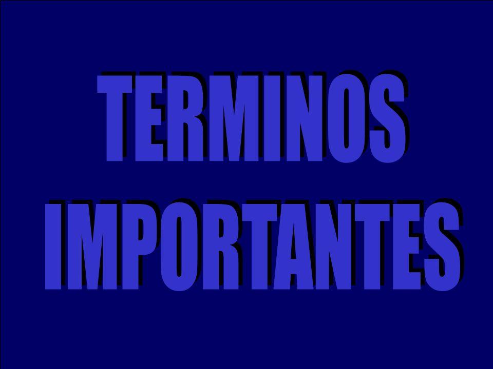 TERMINOS IMPORTANTES