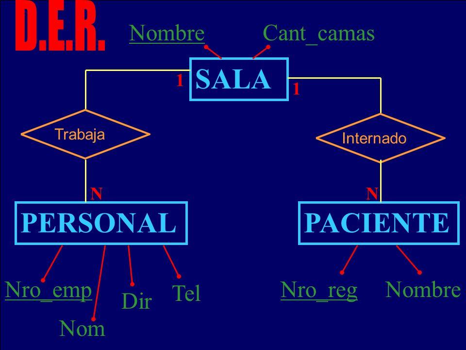 SALA PERSONAL PACIENTE D.E.R. Nombre Cant_camas Nro_emp Nro_reg Nombre