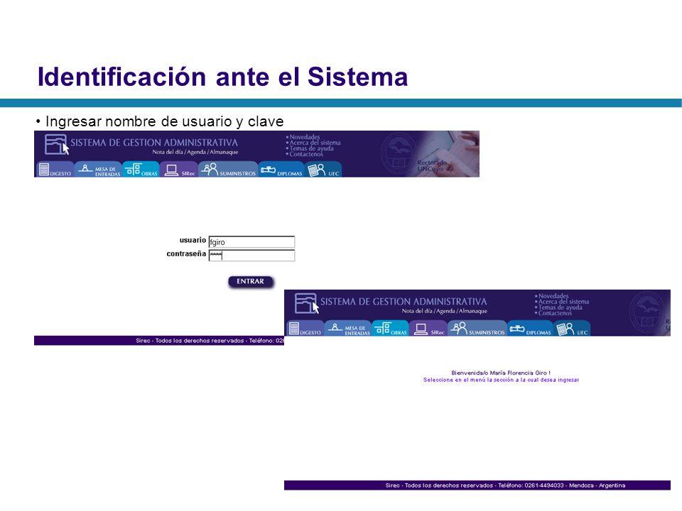 Identificación ante el Sistema