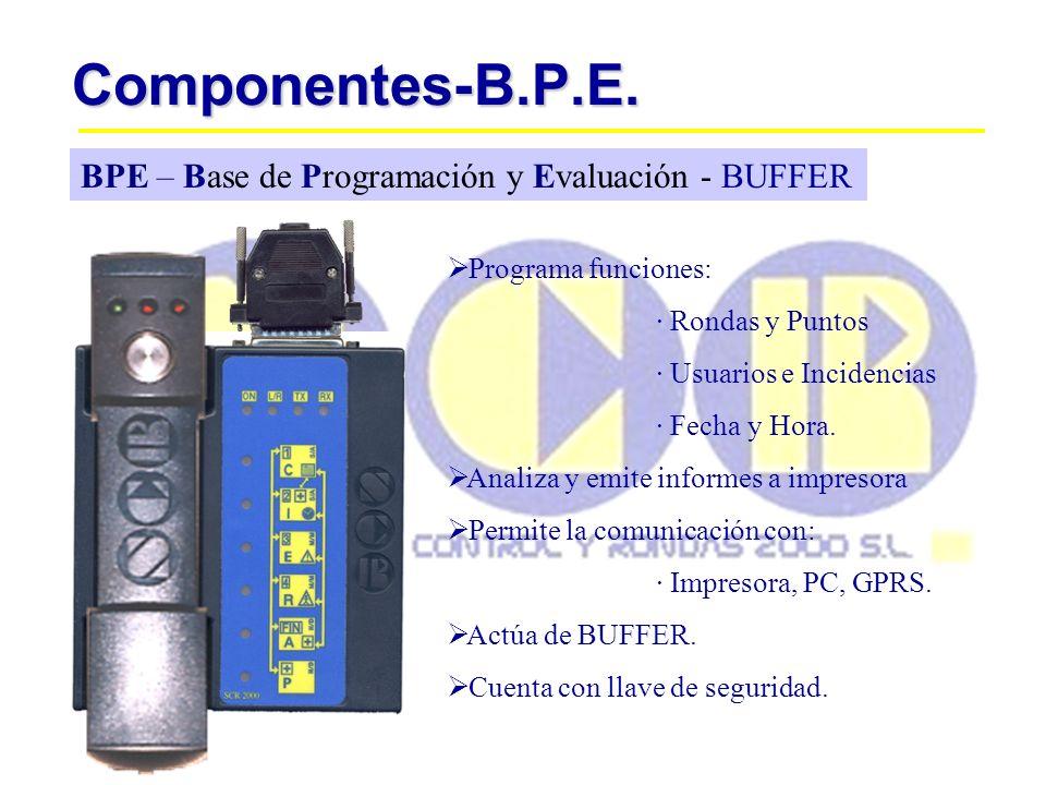 Componentes-B.P.E. BPE – Base de Programación y Evaluación - BUFFER